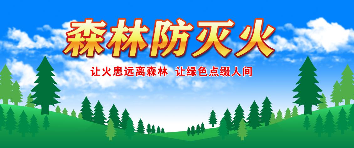 森林防灭火新.png